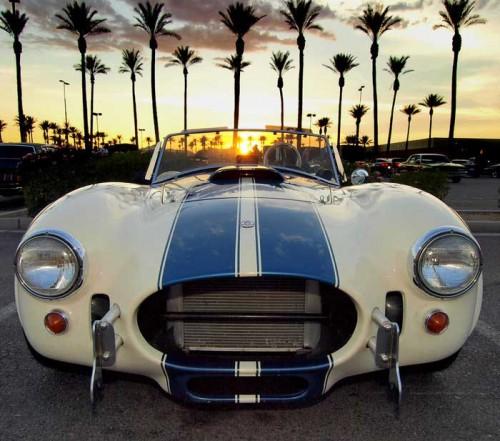 AC-Cobra-sunset.md.jpg